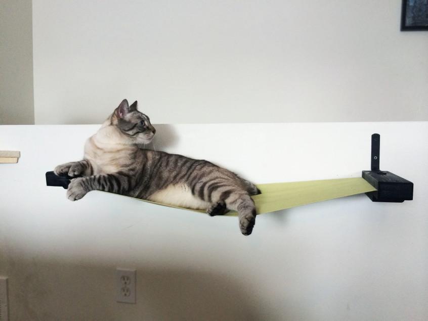 cat litter kwitter reviews