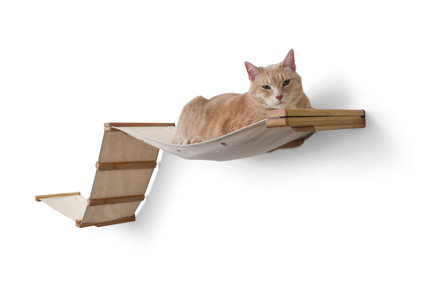 cat laying on wall mounted fabric track