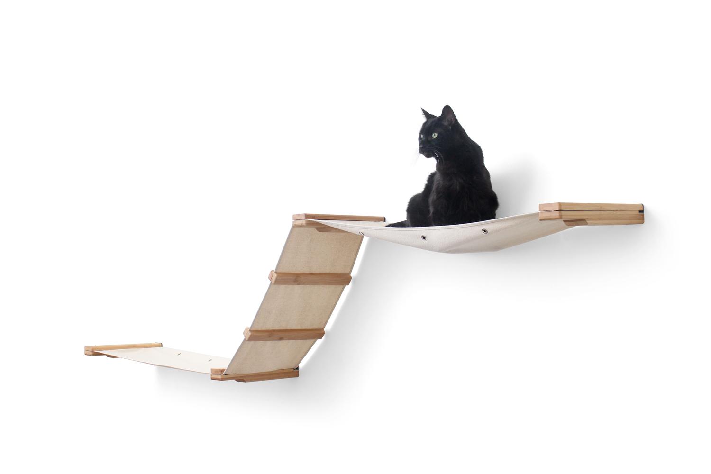 cute kitten sitting on wall mounted fabric track