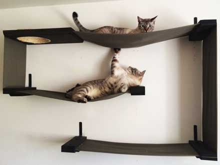 Complex Cat Furniture