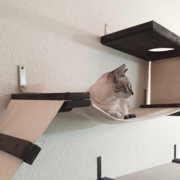 cat-playplace-3