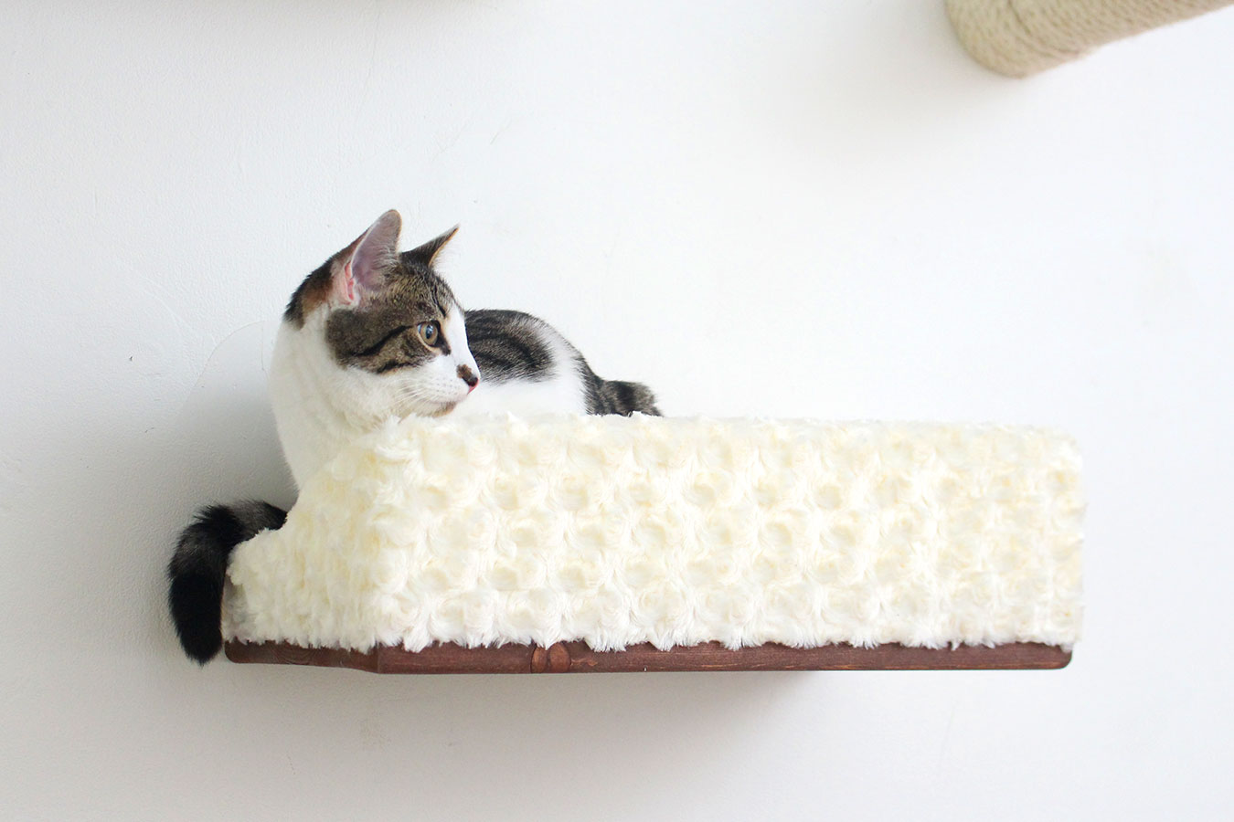 Large Plush Padded Cat Bed Shelf ⋆ Catastrophic Creations
