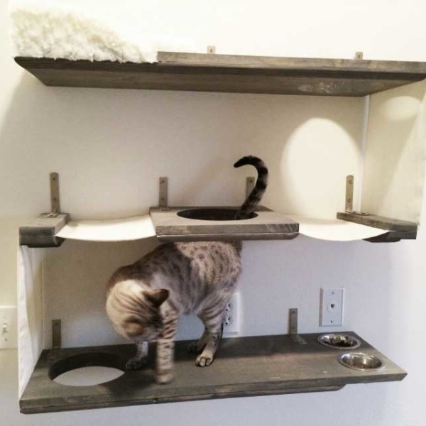 three-level-cat-bunker-3