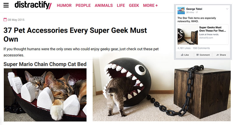 catastrophic creations on distractify