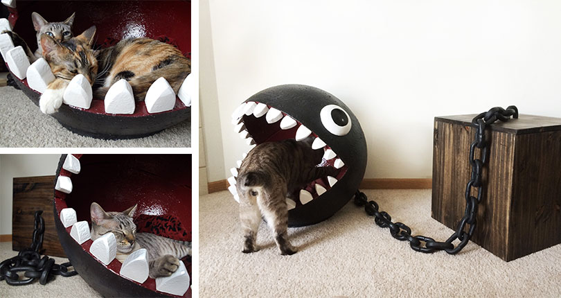 photo collage of cats laying in mario inspired cat bed