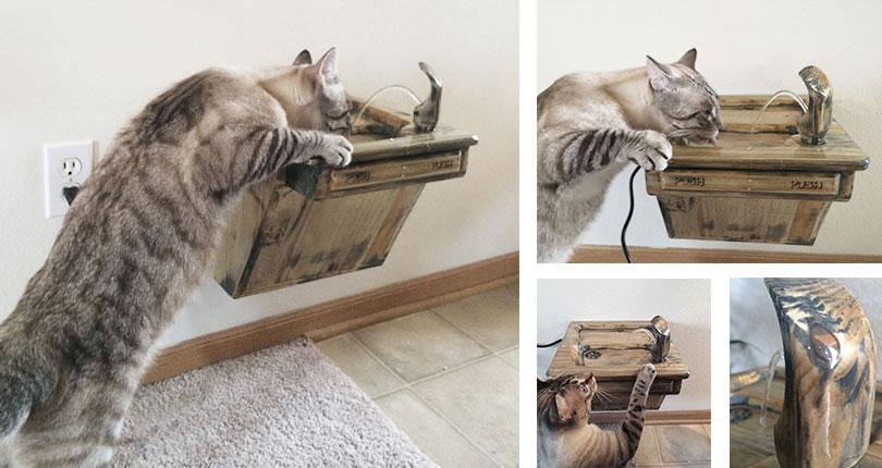 cat using cat water fountain