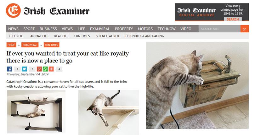catastrophic creations on irish examiner