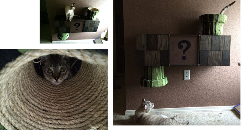 photo collage of cats playing on mario themed wall mounted cat furniture