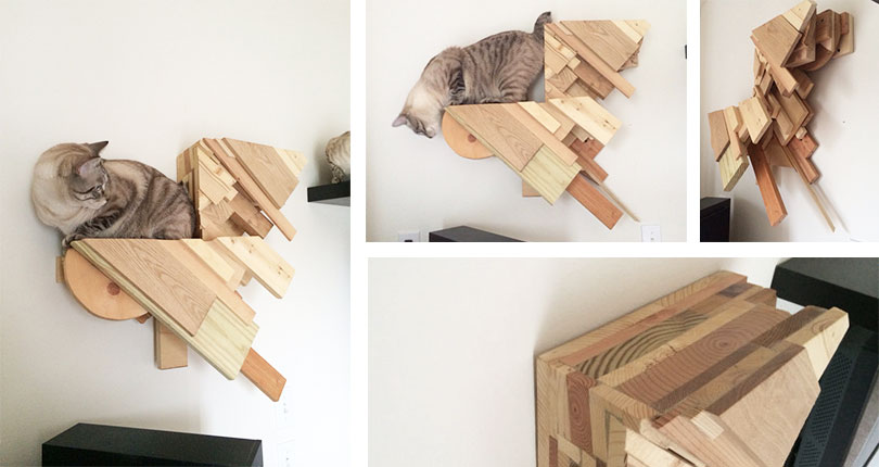 cat sitting on artisanal shelf