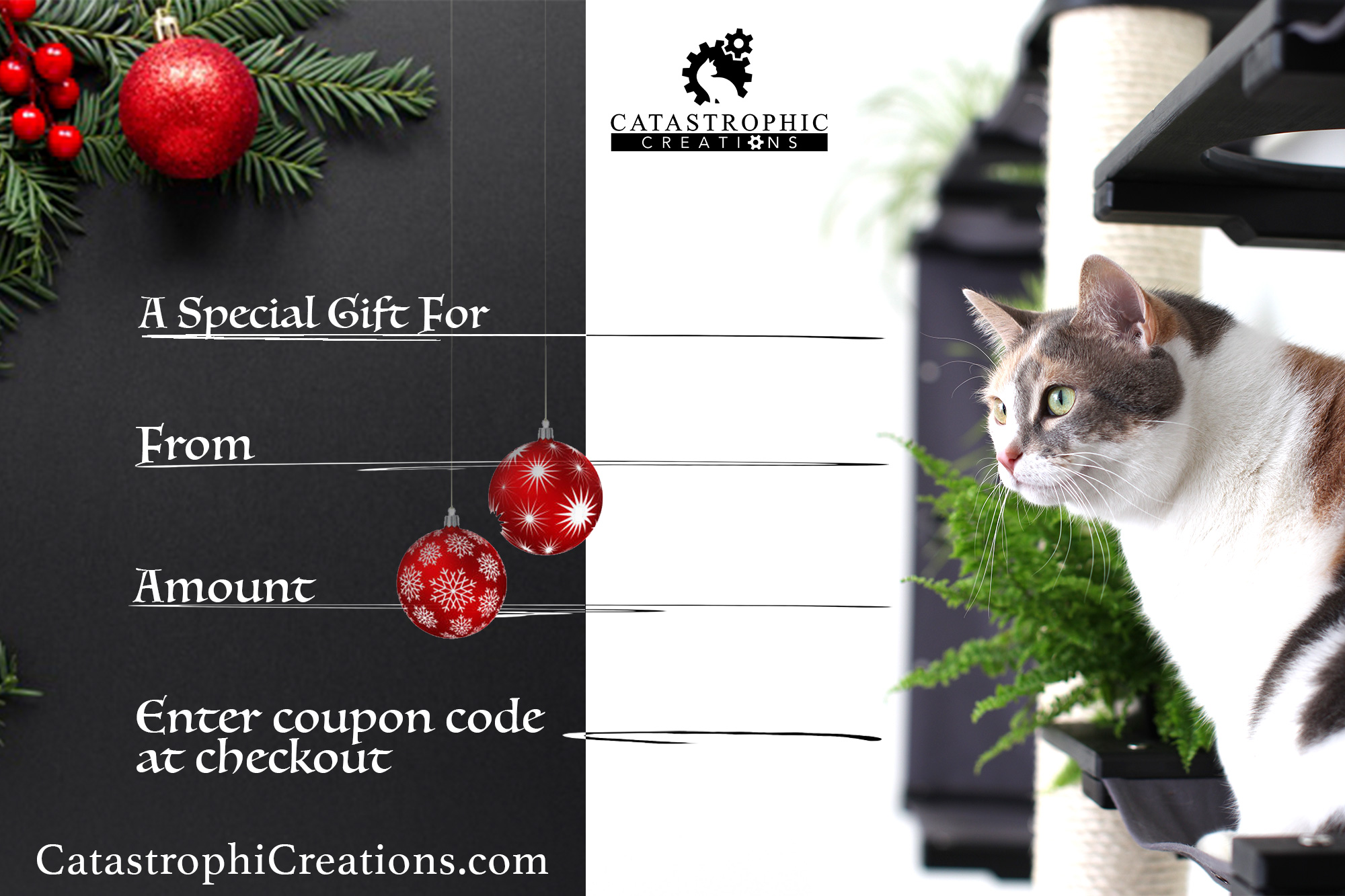 catastrophic creations gift card
