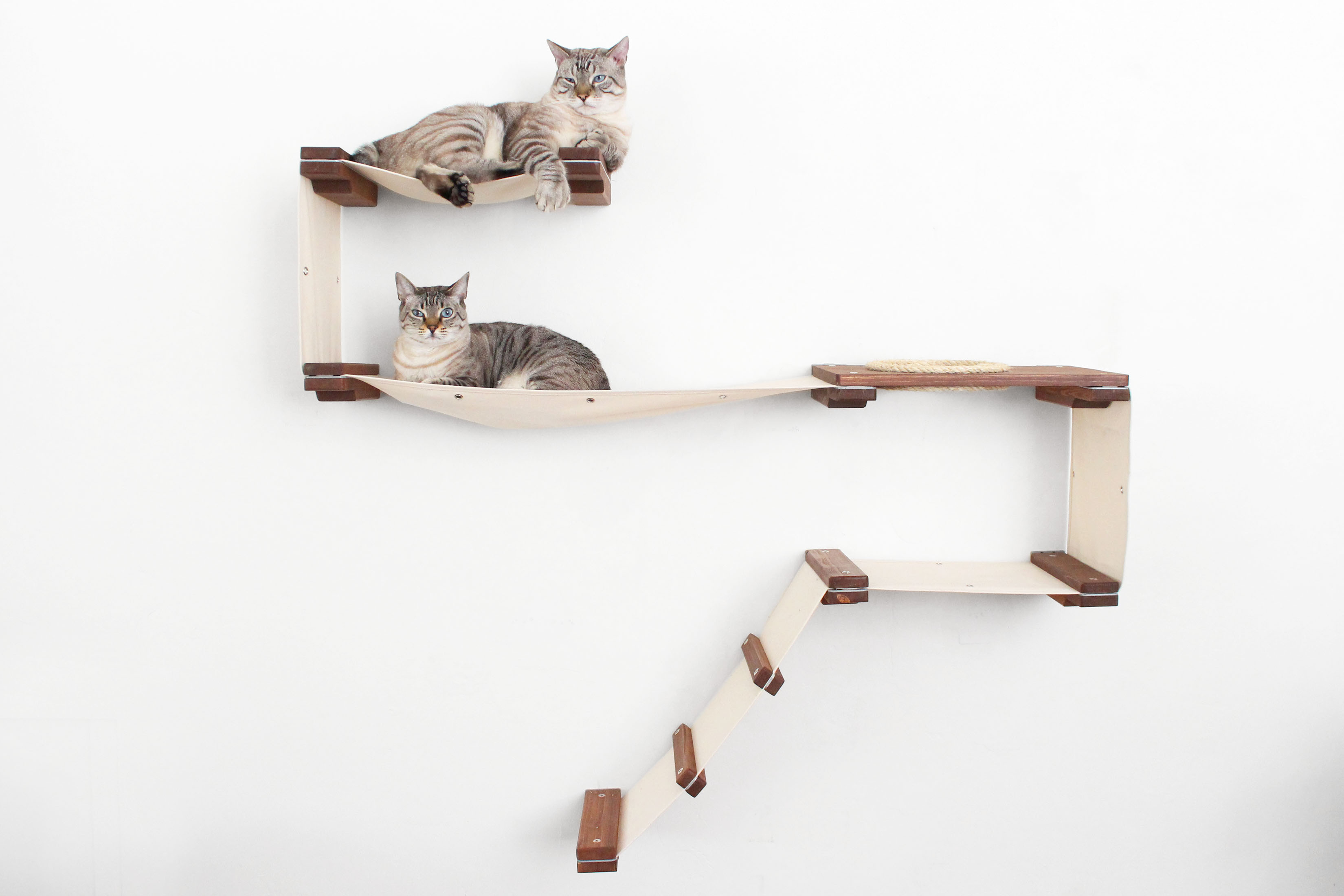 ladder centers posts hammock level wooden deluxe with condo katz natural sisal tree trees collections cat mau and activity