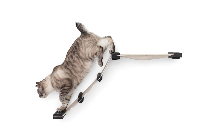 kitten climbing on wall mounted fabric track