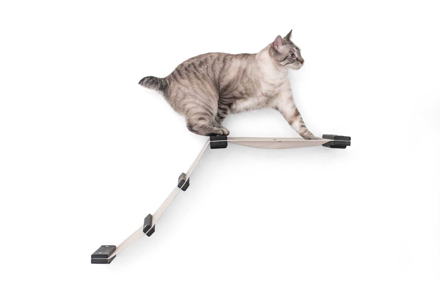 cat climbing on wall mounted fabric track