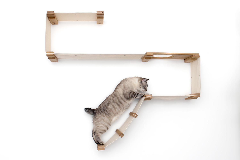 cat exploring wall mounted cat furniture