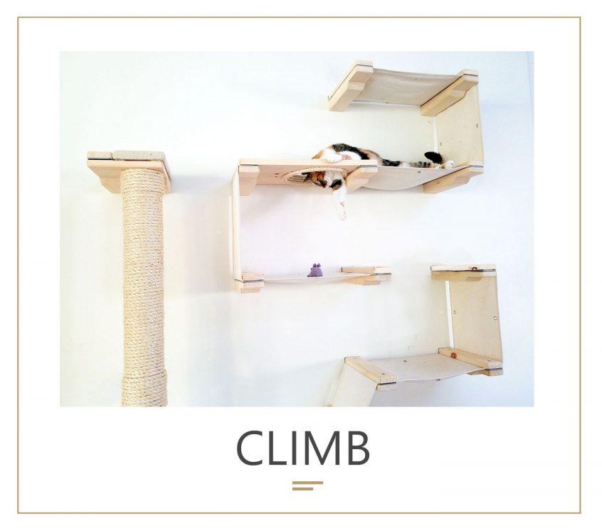 climb_new