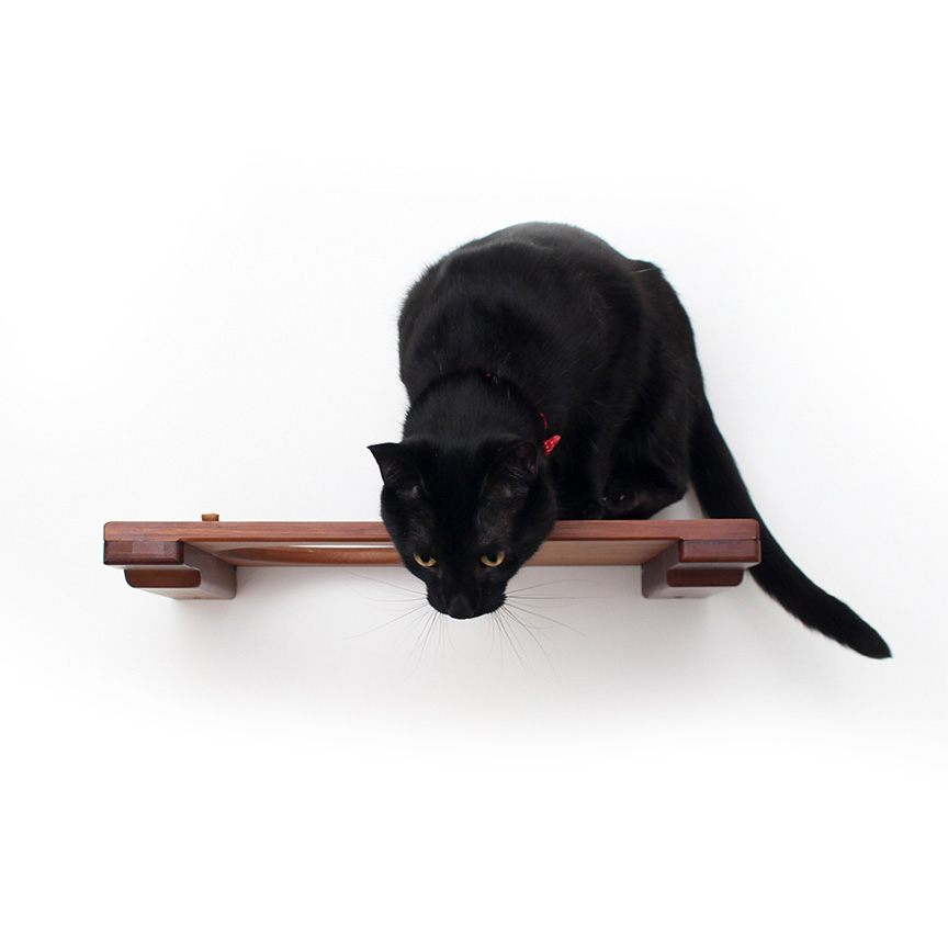 18 inch escape hatch with beautiful black cat