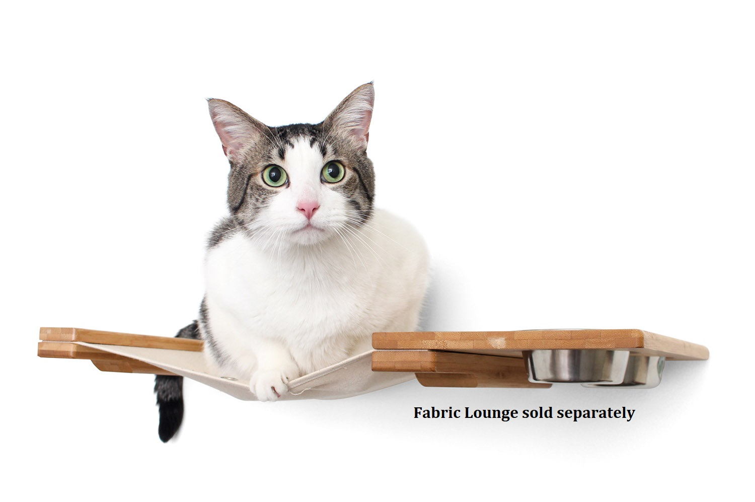 This photo displays a cat sitting on the hammock of the Feeder Lounge. This image displays the Feeder Lounge in Natural, a light brown stain, with Natural fabric, a light tan color.
