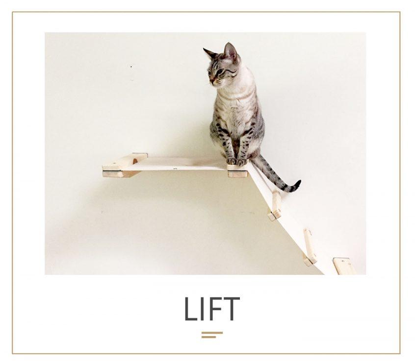 lift_new