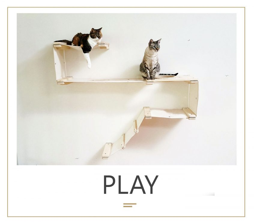 mod_PLAY