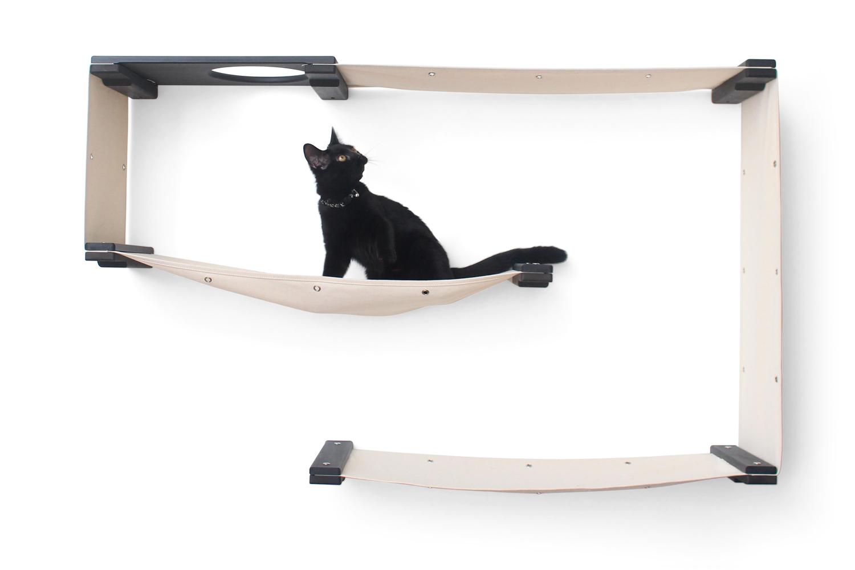 cute black kitten exploring wall mounted cat furniture