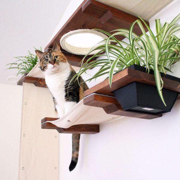 cat_gardens22_web