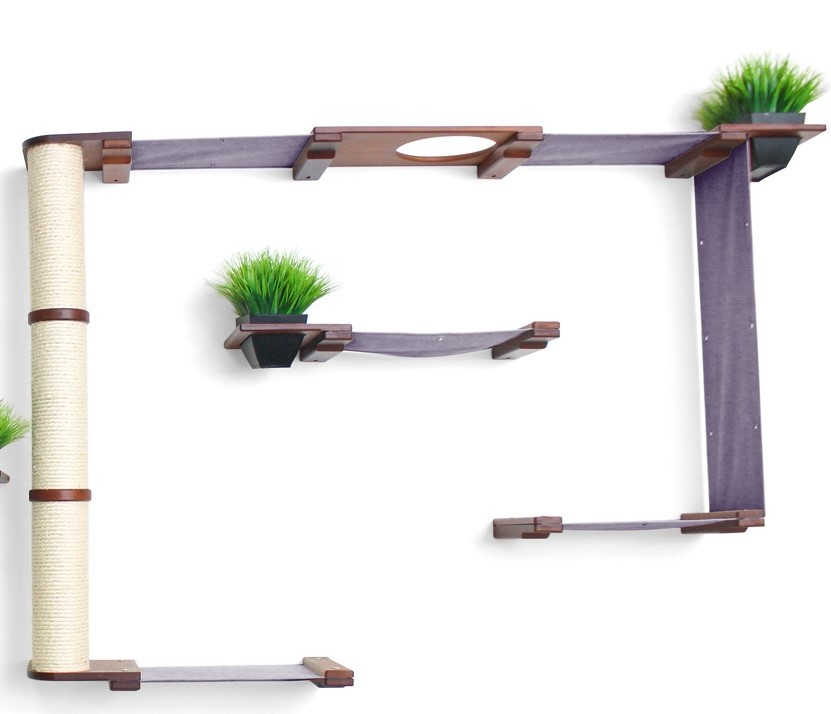 wall mounted cat furniture mini garden with green plant