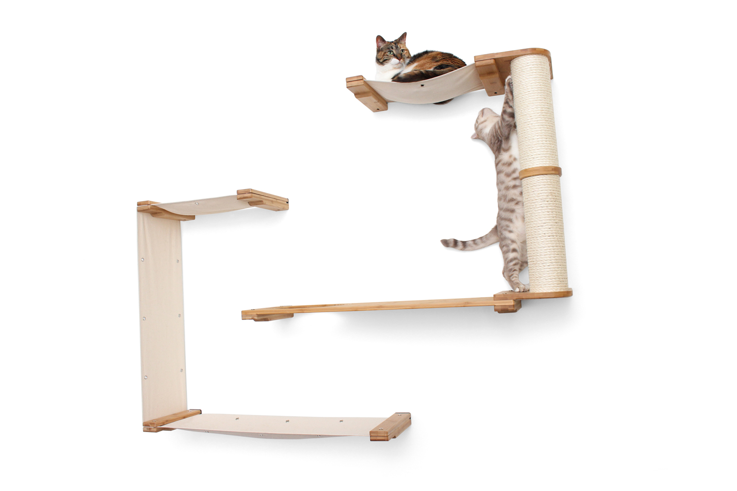 two cats laying and playing on wall mounted cat complex