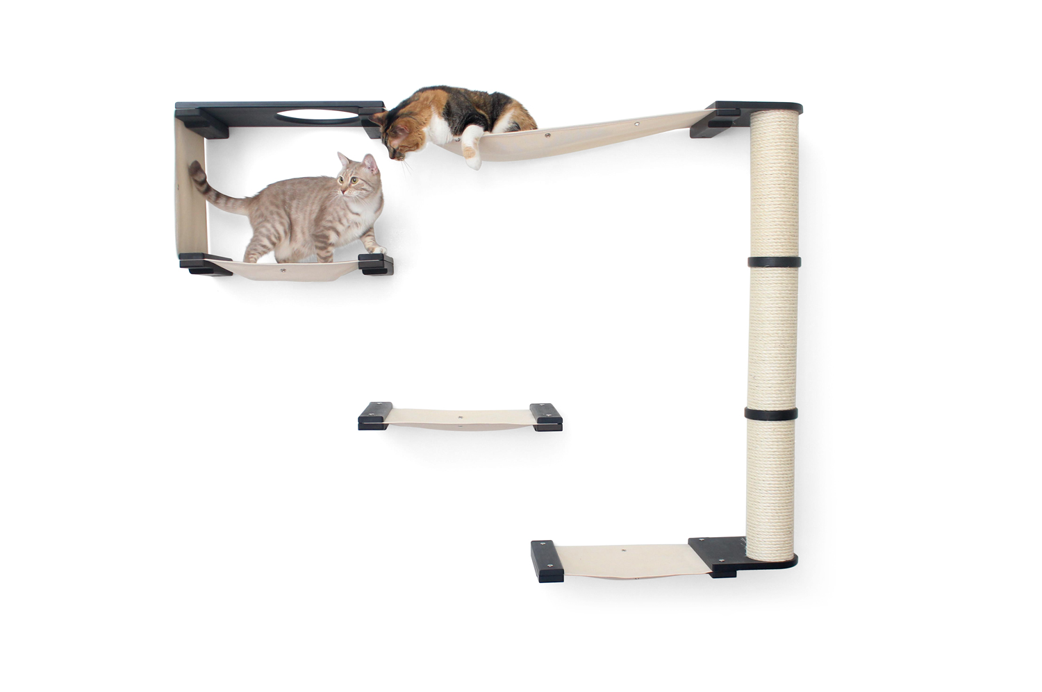 wall mounted cat climb with tan cat and calico cat