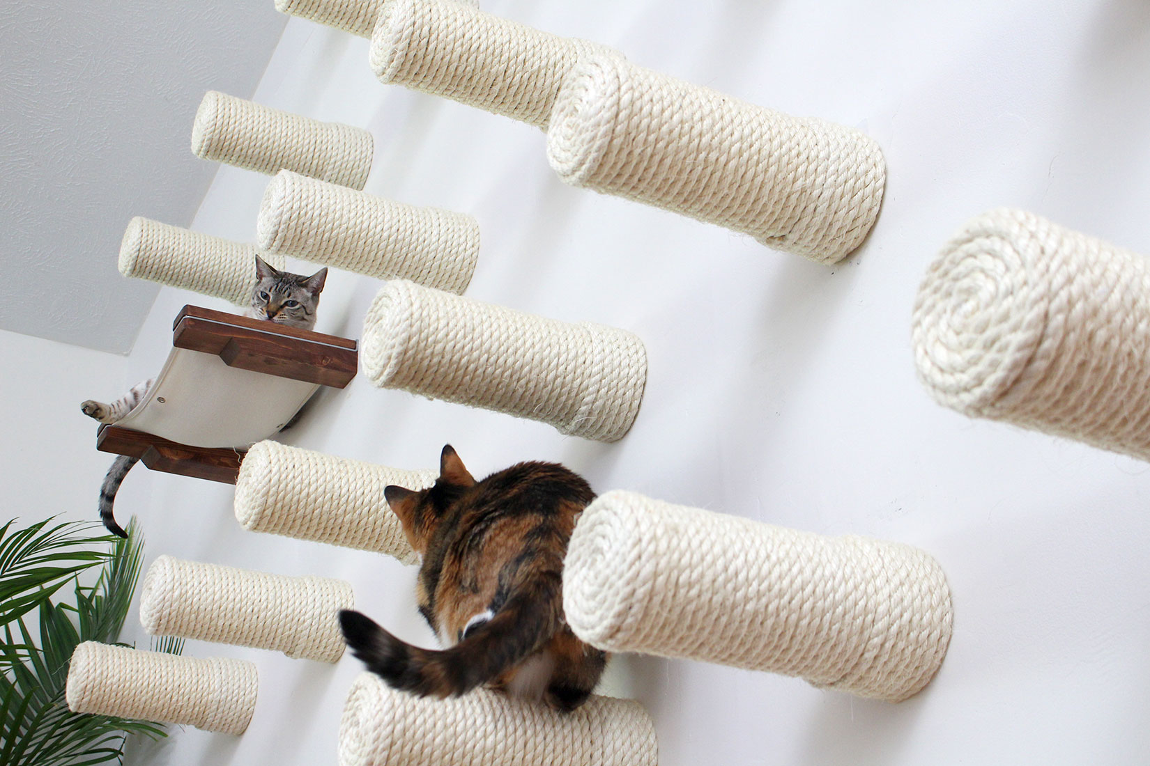 Wall Of Sisal Posts ⋆ Catastrophic Creations