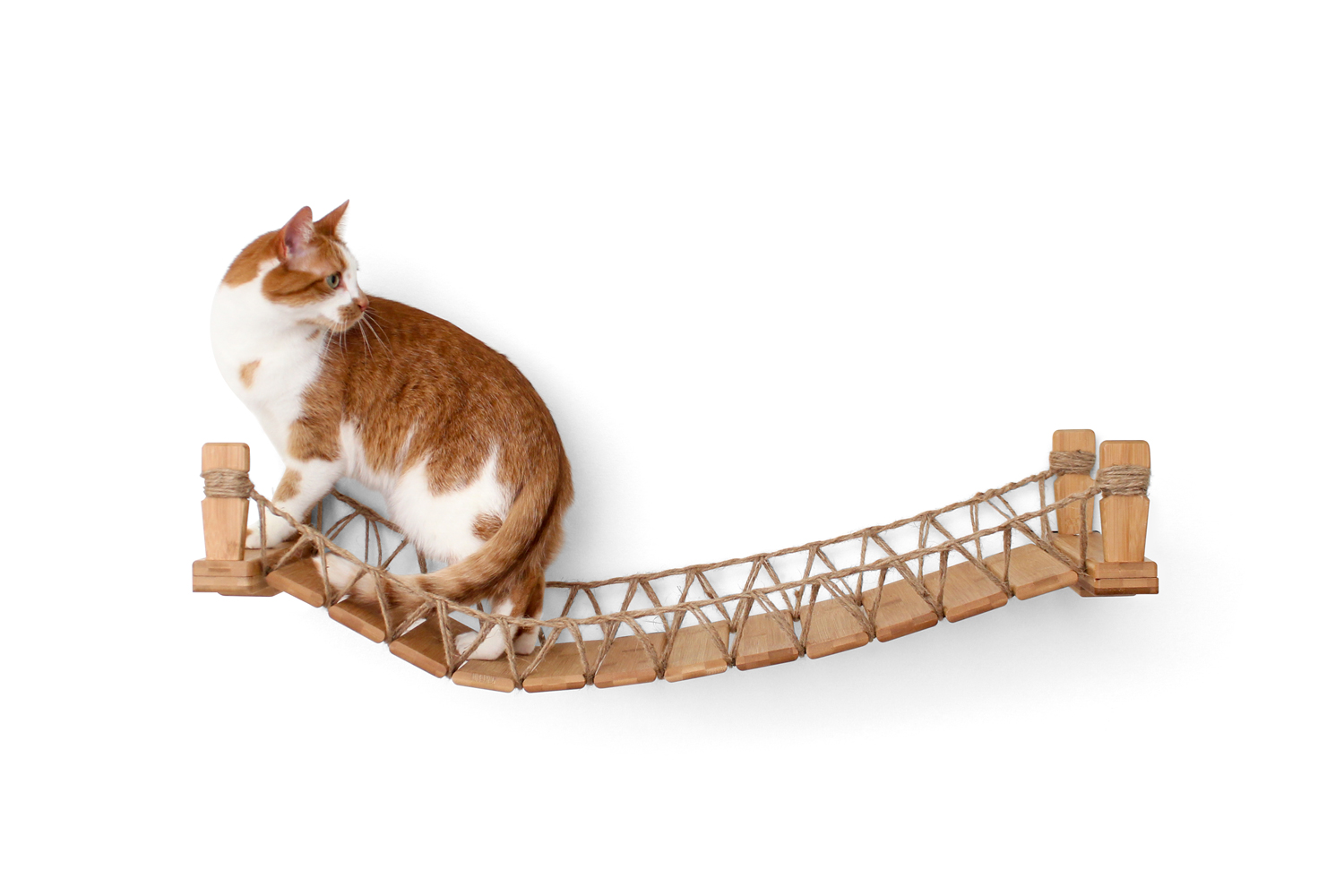 This photo displays a cat on the Cat Bridge in Natural, a light brown stain.