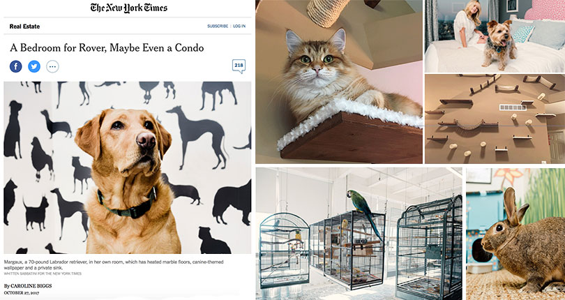 catastrophic creations on the new york times