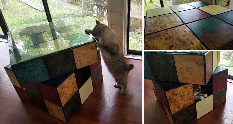 photo collage cat interacting with large rubix cube cat bed