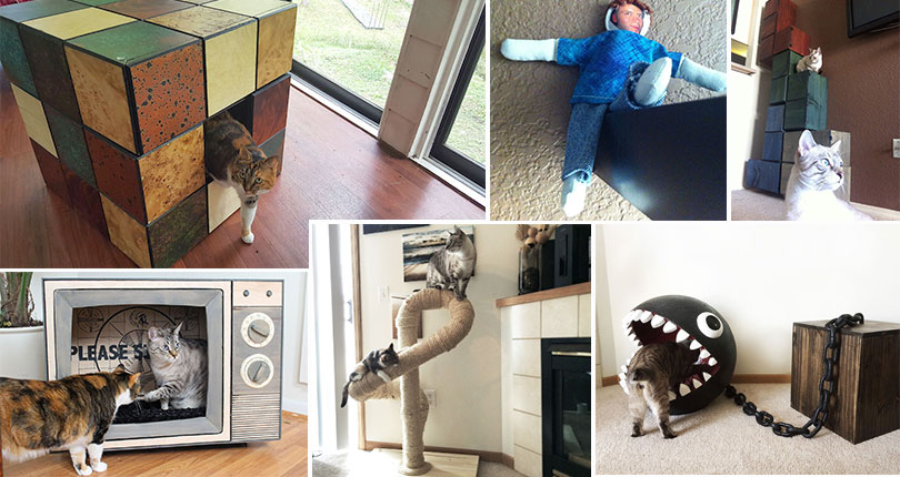 photo collage of cat toys