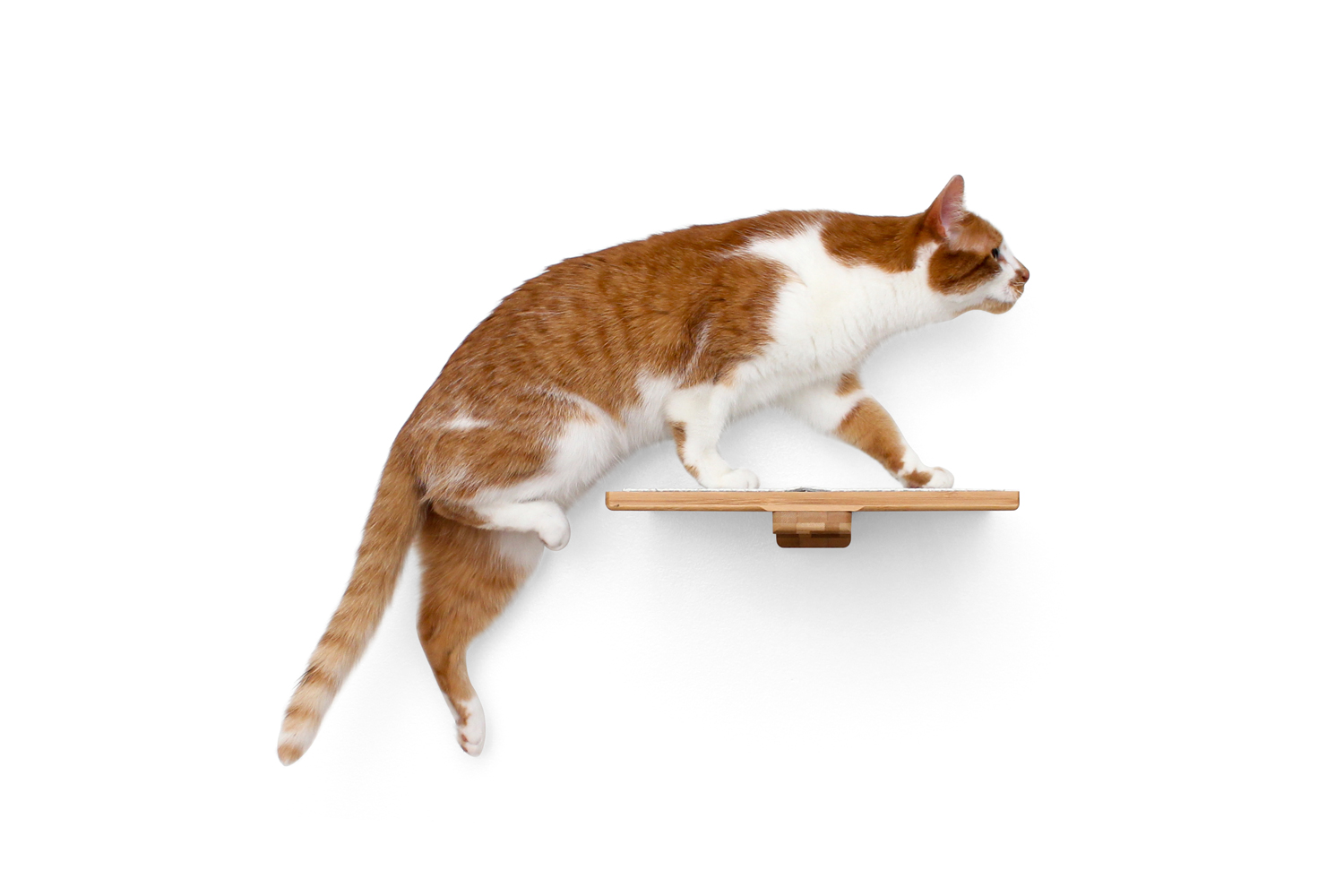 This photo displays a cat jumping on the 12-Inch Cat Shelf. This image displays the shelf in Natural, a light brown stain.