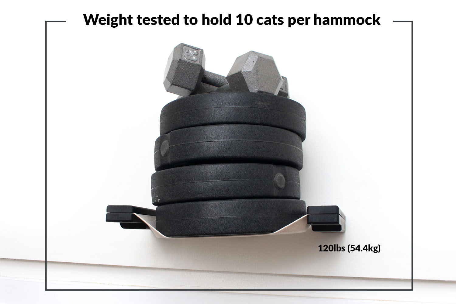 This photo displays a weight test on one of the Cat Lounges. This weight test shows the hammock holding 120lbs (54.4kg).