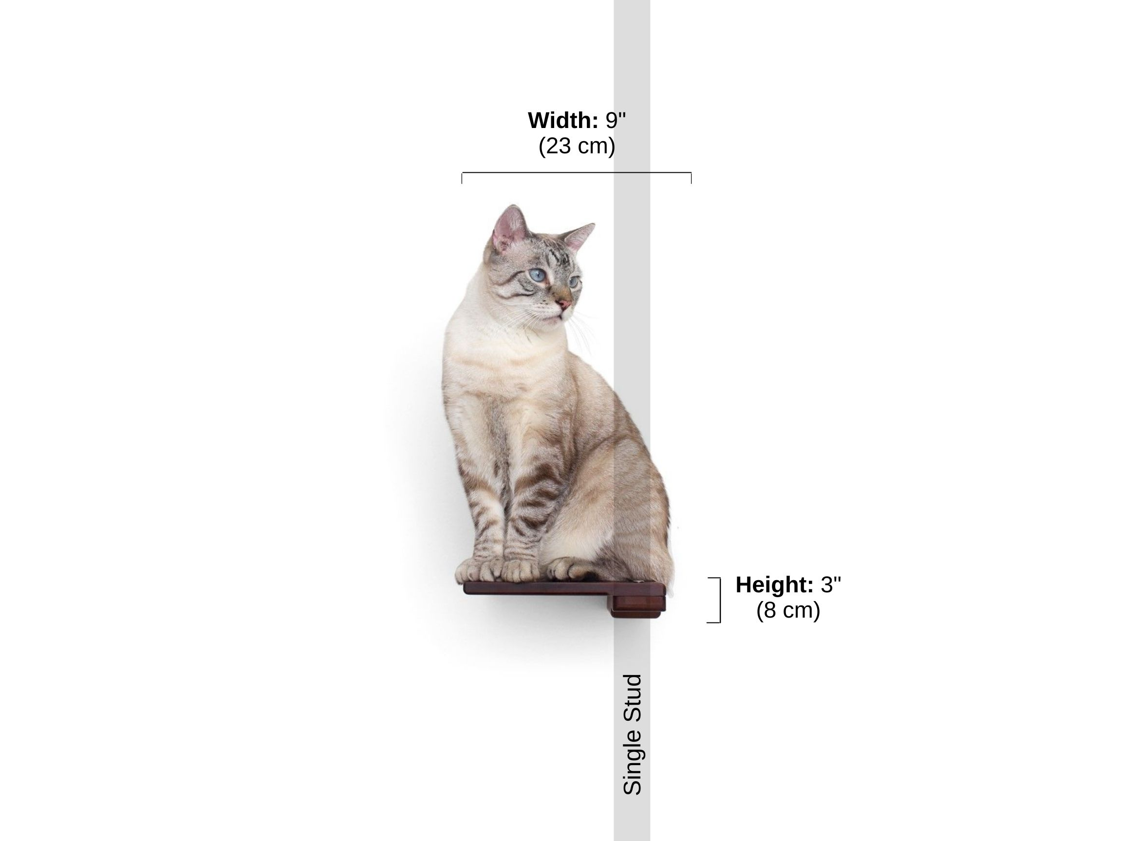 Stud spacing and dimensions of cat step