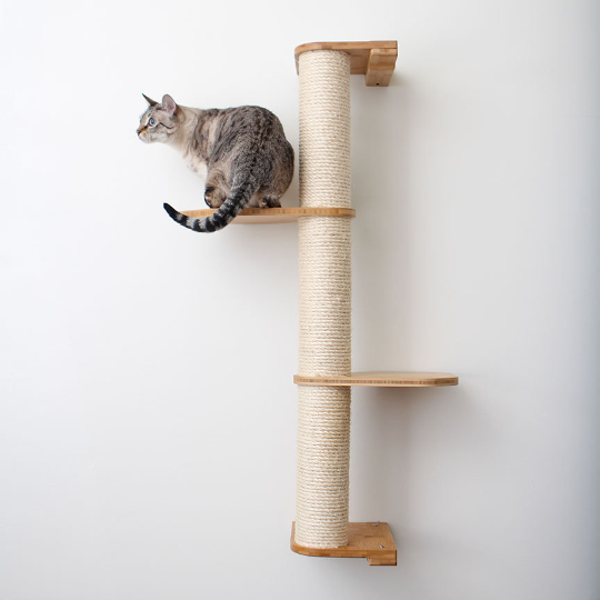 This image displays a photo of our cat sitting on a three tier Deluxe Sisal Climbing Pole. The Sisal Pole and Leaf Connectors are in Natural, a light brown stain.