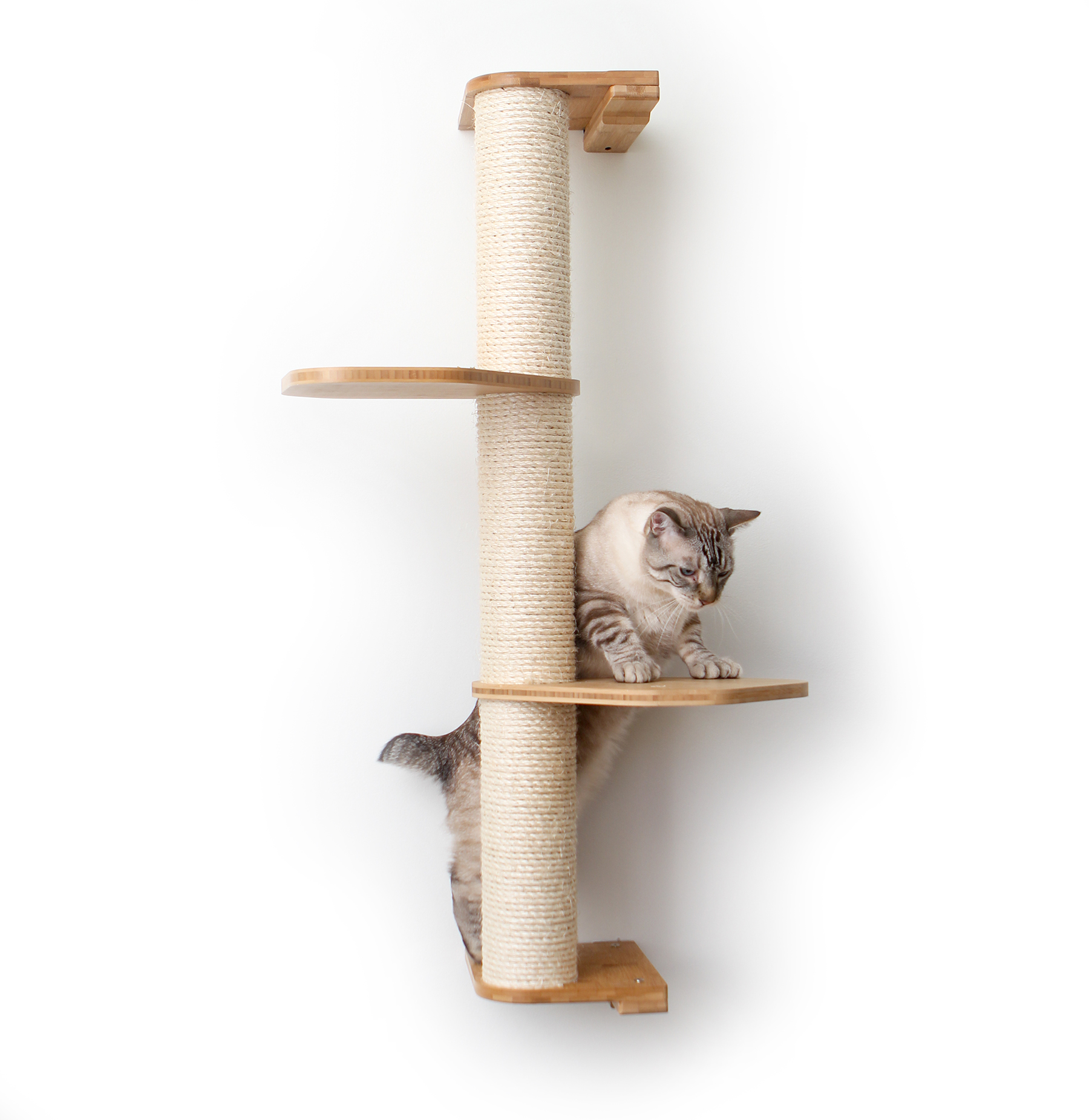 This photo displays our cat climbing a three tier Sisal Pole that has two additional Leaf Connectors. The Sisal Pole and Leaf Connectors shown are in Natural, a light brown stain.