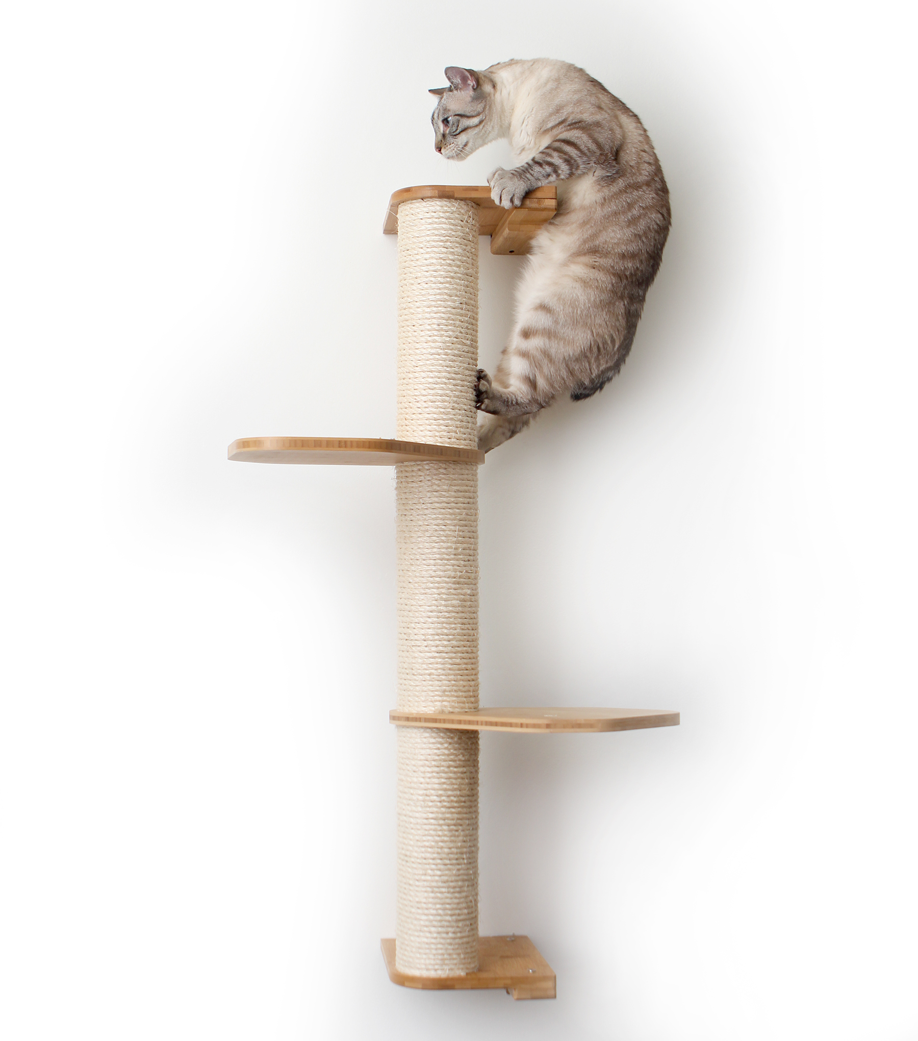 This photo displays our cat climbing the top of a three tier Sisal Pole that has two additional Leaf Connectors. The Sisal Pole and Leaf Connectors shown are in Natural, a light brown stain.