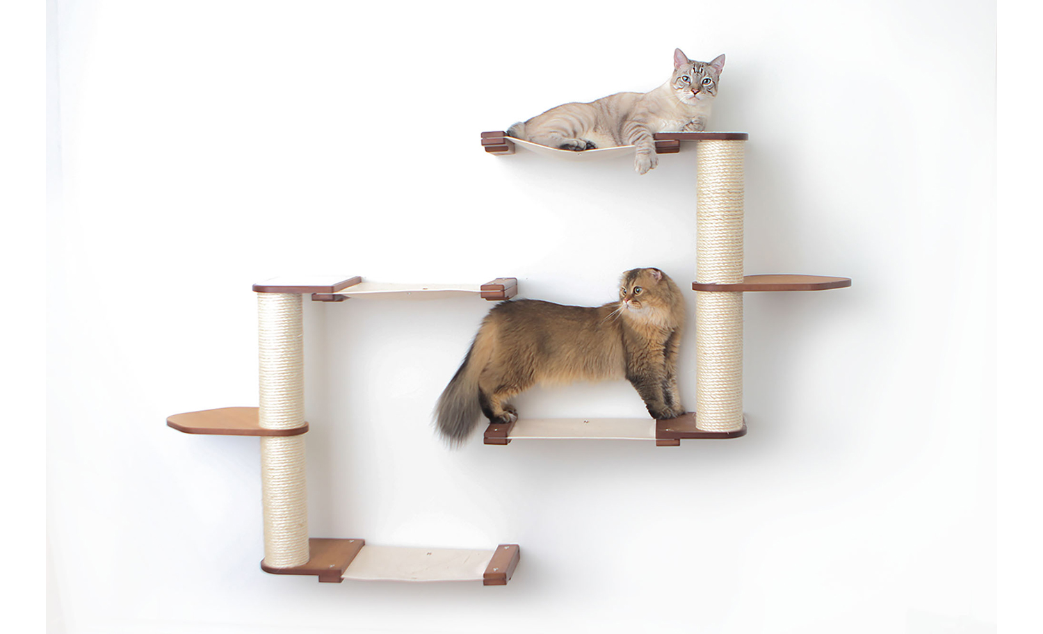 catacombs complex wall mounted cat furniture with brown cat and gray cat