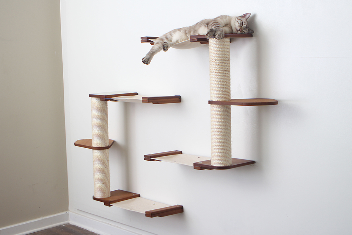 catacombs complex wall mounted cat furniture with gray tabby