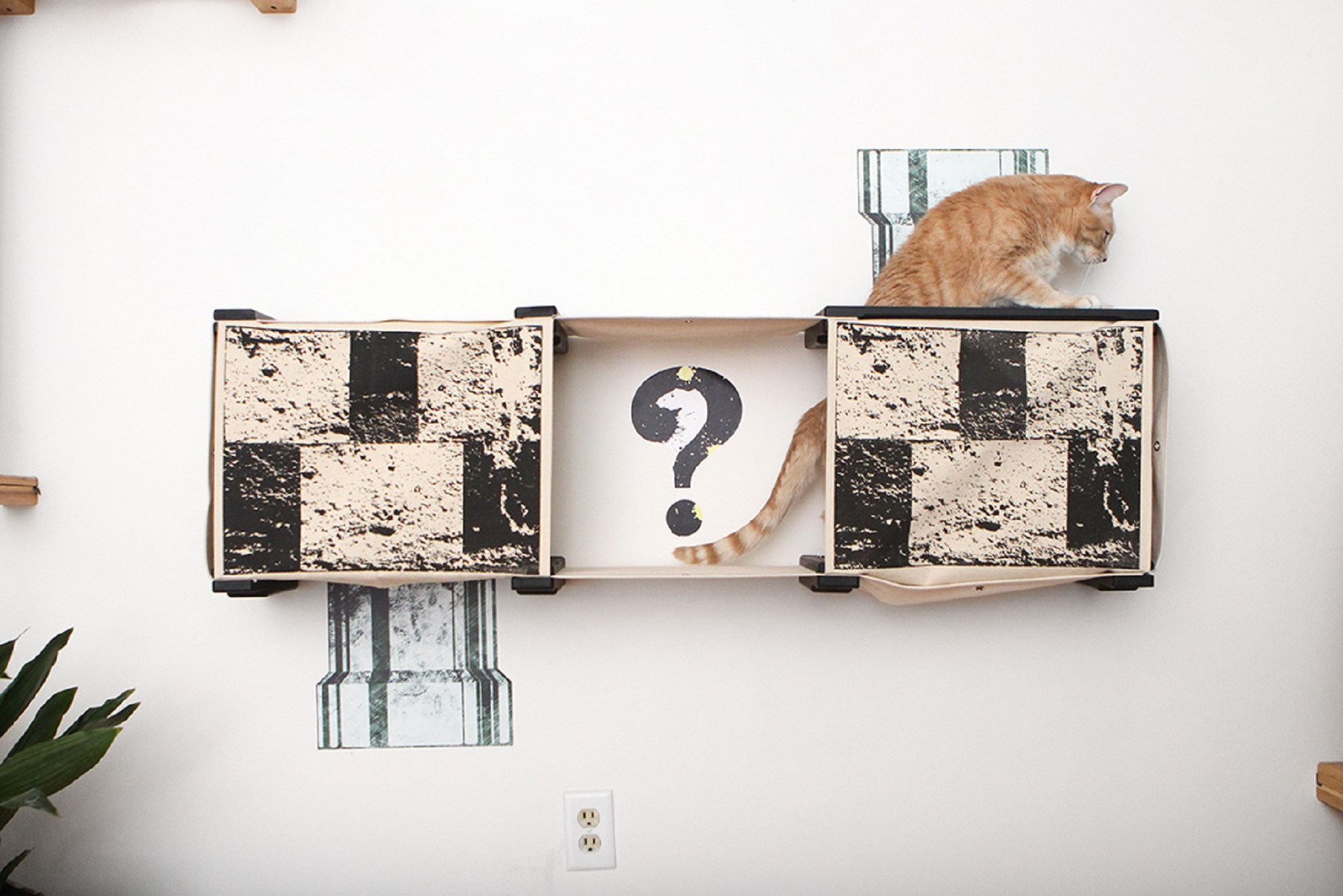 orange cat jumping from hole in escape hatch to the top of Mario Complex