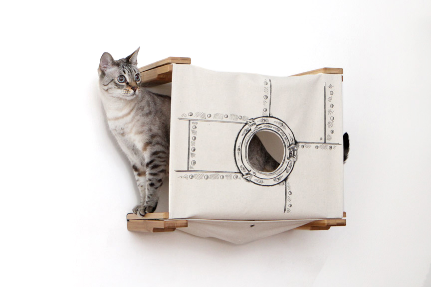 cat in wall mounted cubby