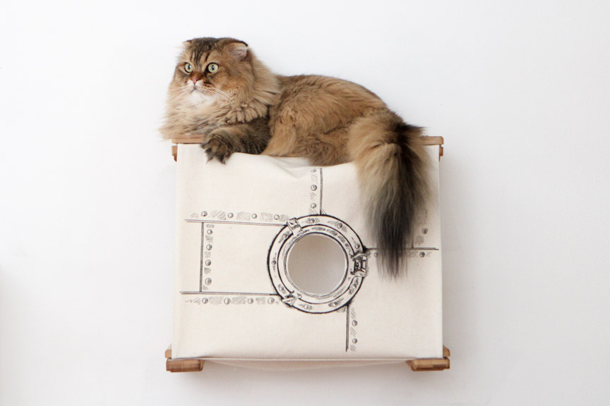 Wall mounted cat tunnel cubby with dazed fluffy cat on top