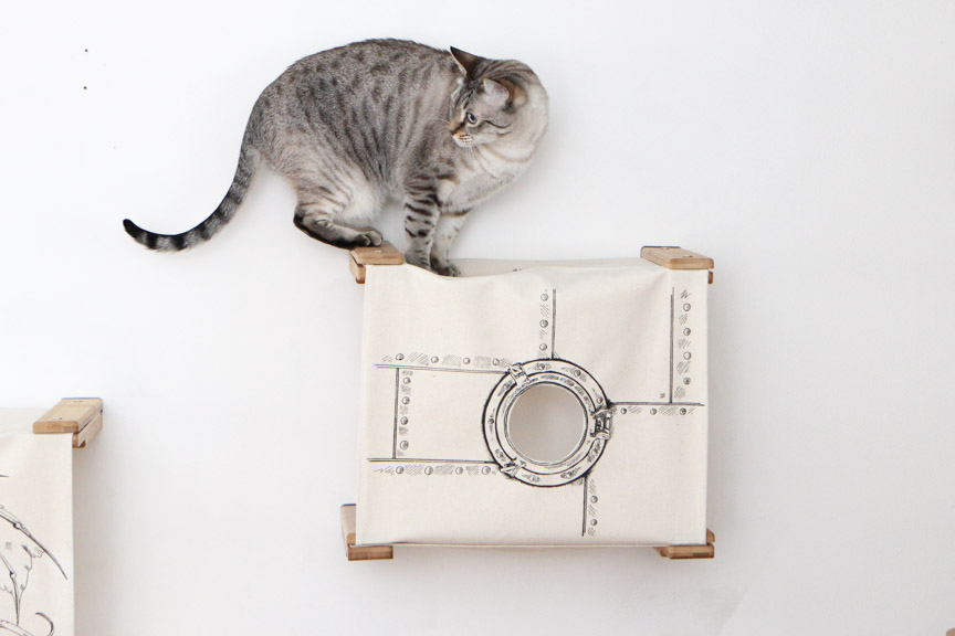Wall mounted cat tunnel cubby with gray kitten on top