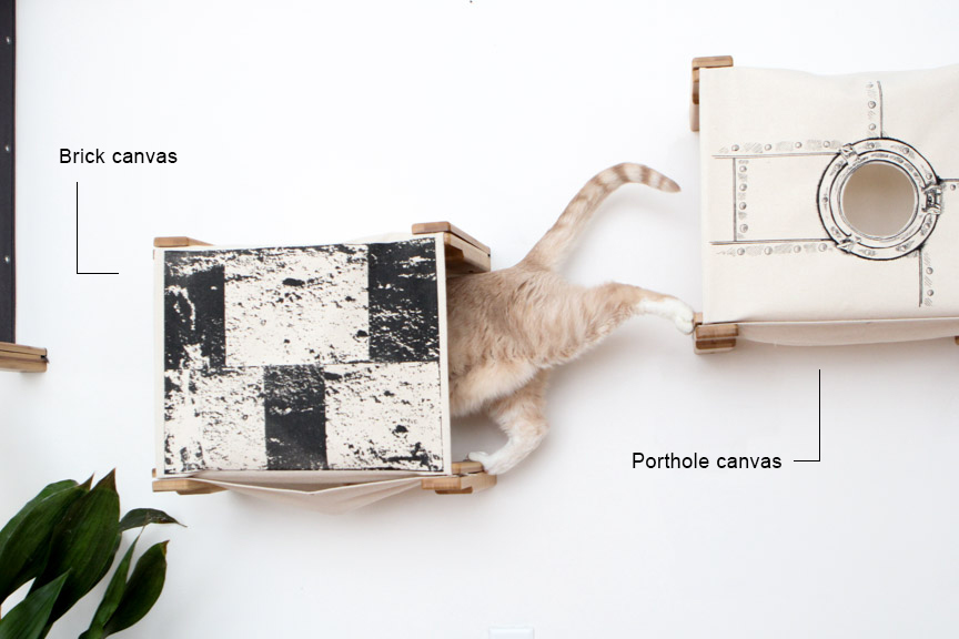 cat climbing through wall mounted cat cubbies