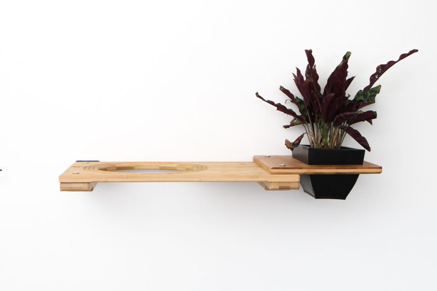 """Natural bamboo wood 18"""" Escape Hatch with planter attachment with plant"""