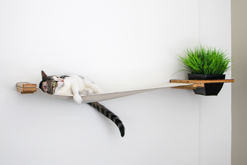 cat laying on planter lounge