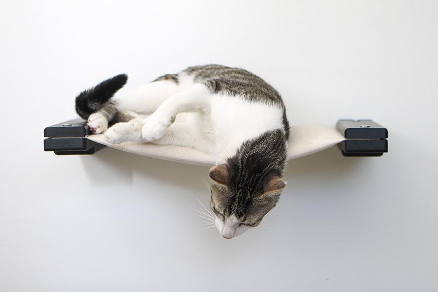 cat on cloud pillow hammock