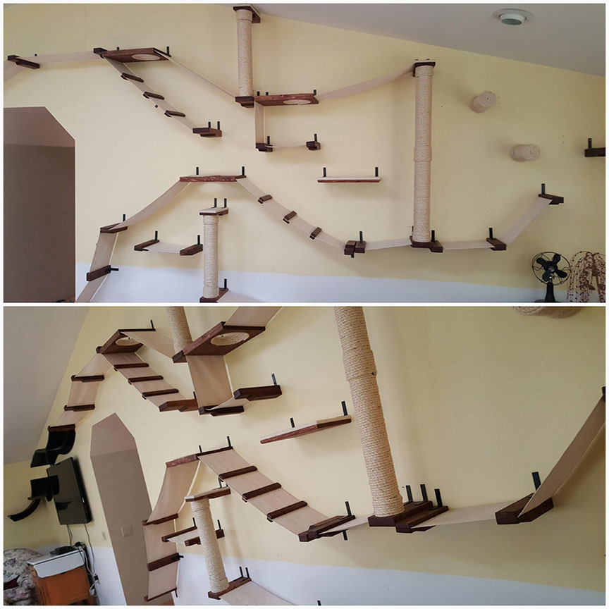 wall mounted cat complex
